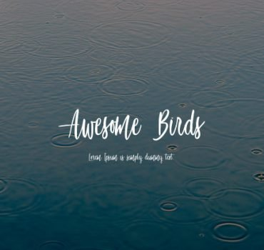 Awesome Bird Font